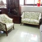 Комплект мягкой мебели Арт.9173DB/L22C1GC (диван+кресло)