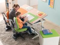 Детская мебель Mealux